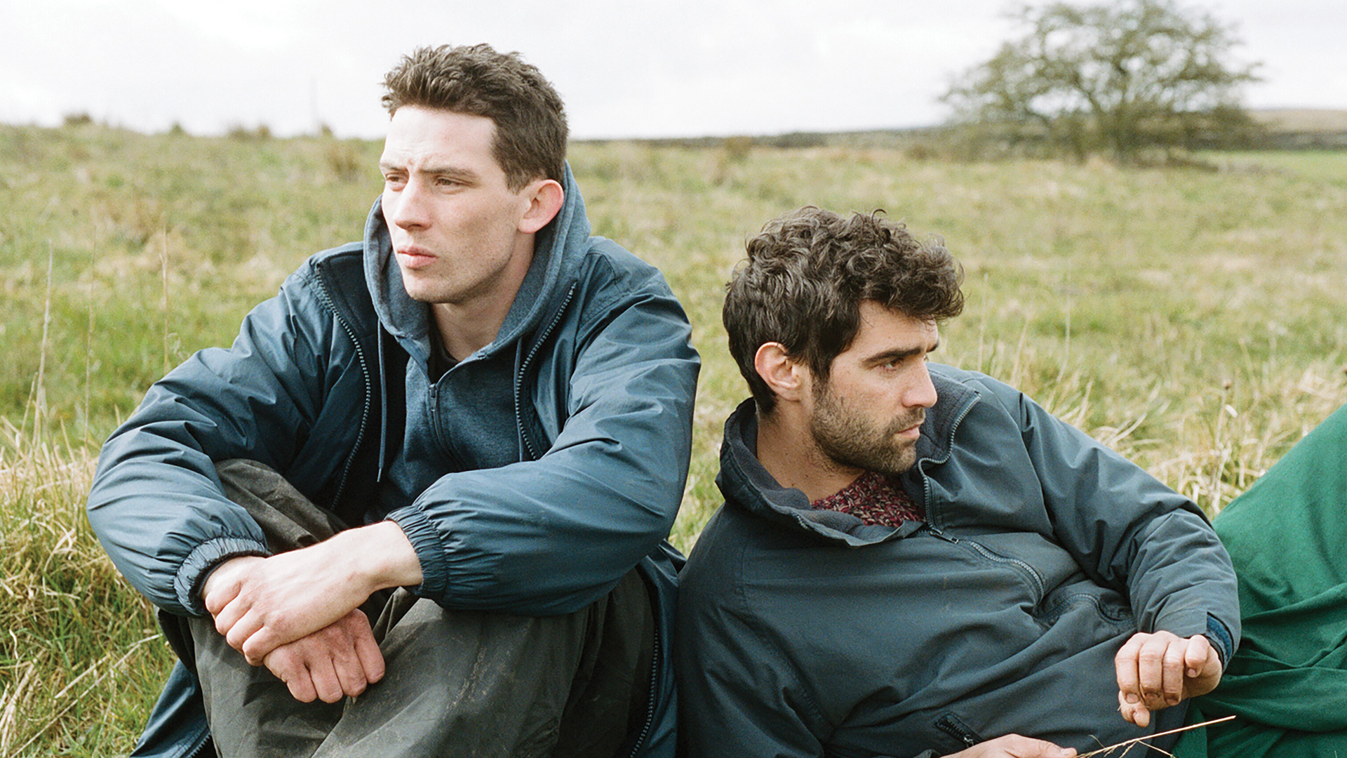 Filmhuis: God's own Country
